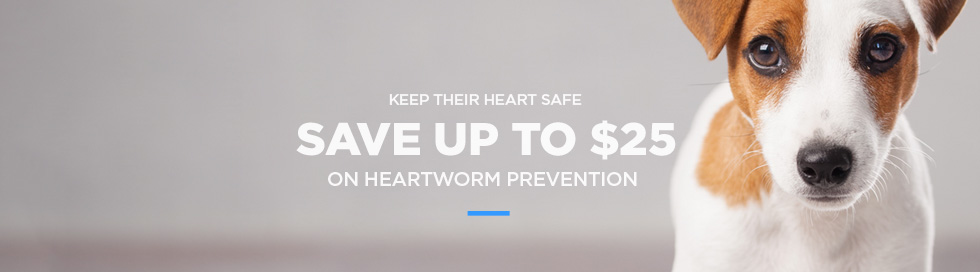 Heartworm Preventatives