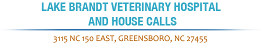 Lake Brandt Veterinary Hospital and House Calls