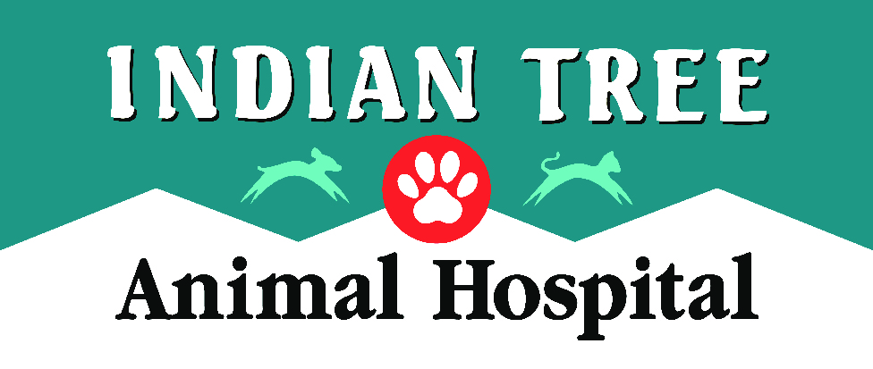 Indian Tree Animal Hospital
