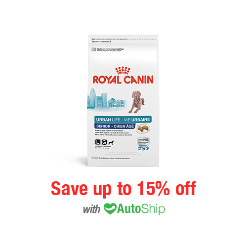 Royal Canin Lifestyle Health Nutrition Urban Life Large Breed Senior Dry