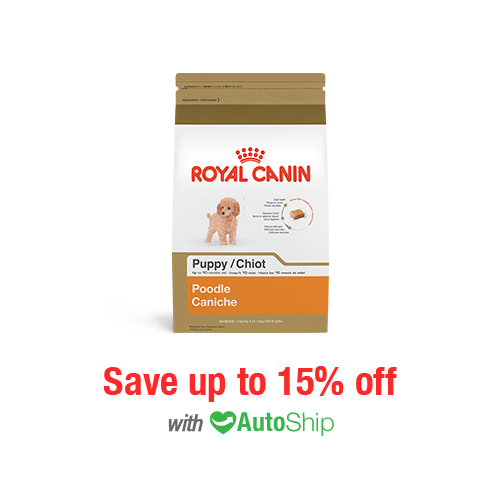 Royal Canin Breed Health Nutrition Poodle Puppy Dry