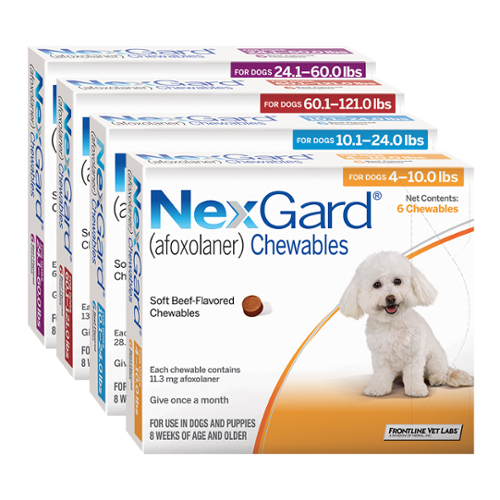 NexGard® Chewables for Dogs
