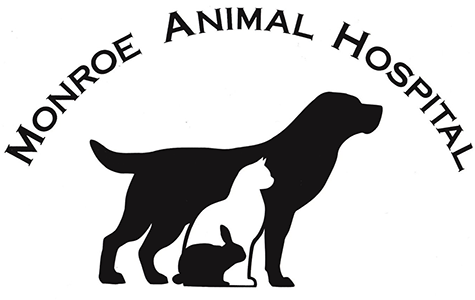 Monroe Animal Hospital, PA