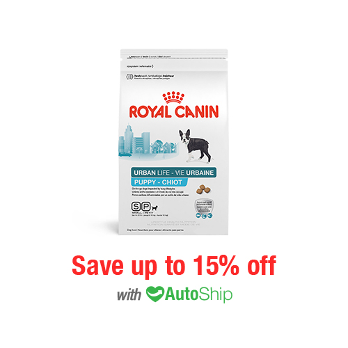 Royal Canin Lifestyle Health Nutrition Urban Life Small Breed Puppy Dry