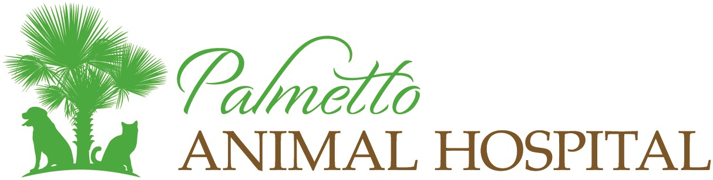 Palmetto Animal Hospital