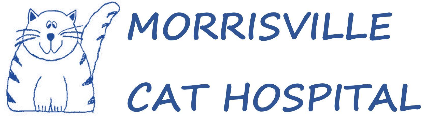 Morrisville Cat Hospital