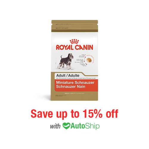 Royal Canin Breed Health Nutrition Miniature Schnauzer Adult Dry