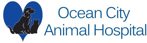 Ocean City Animal Hospital