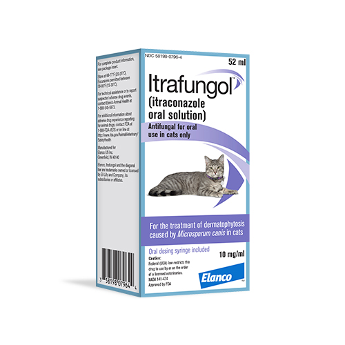 Itrafungol™ Oral Solution for Cats