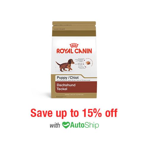 Royal Canin Breed Health Nutrition Dachshund Puppy Dry