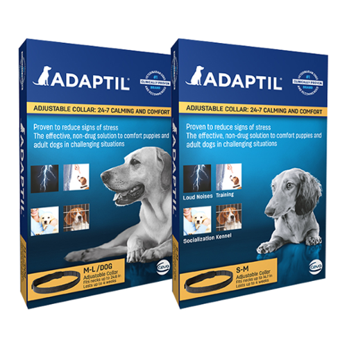 Adaptil™ Small & Medium Dog Collar