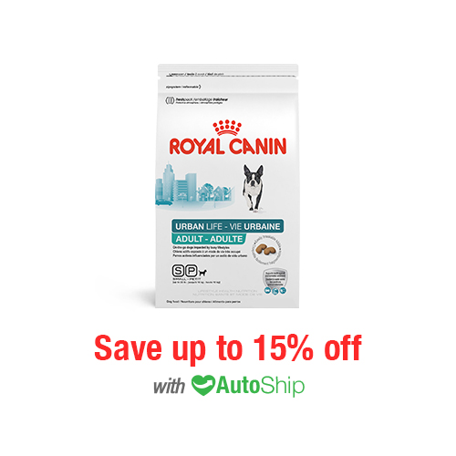 Royal Canin Lifestyle Health Nutrition Urban Life Small Breed Adult Dry