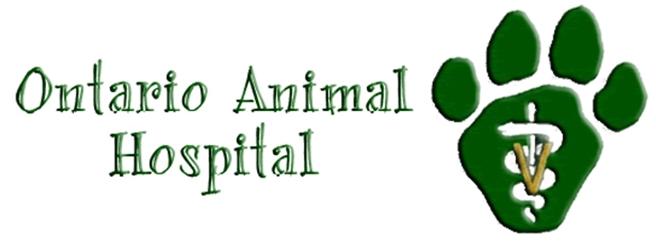 Ontario Animal Hospital