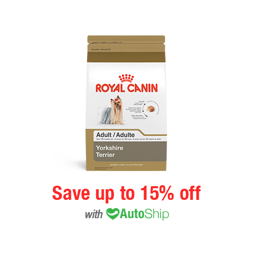 Royal Canin Breed Health Nutrition Yorkshire Terrier Adult Dry