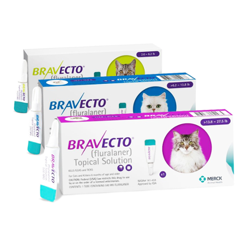 Bravecto® Topical Solution for Cats