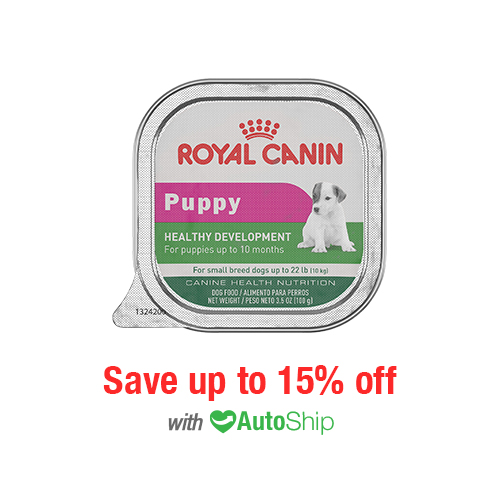 Royal Canin Canine Health Nutrition (Small Dogs) Puppy Health Development Trays