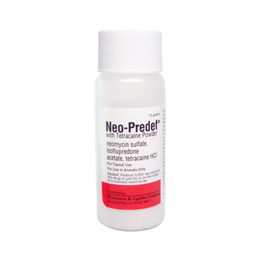Neo-Predef® with Tetracaine Powder