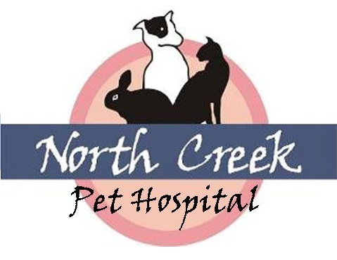 North Creek Pet Hospital
