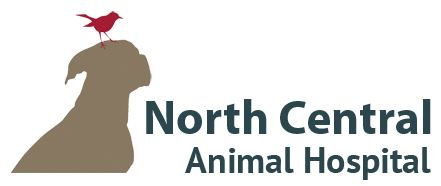 North Central Animal Hospital