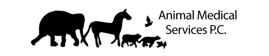 Animal Medical Services