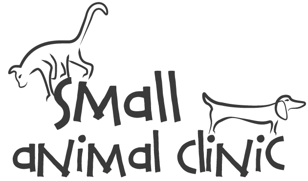 The Small Animal Clinic