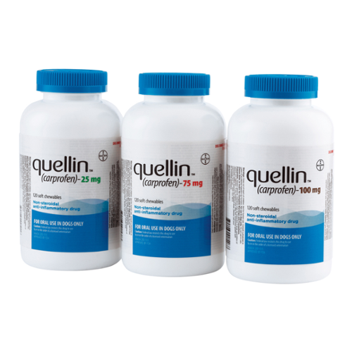 Quellin™ (carprofen) Soft Chewable Tablets