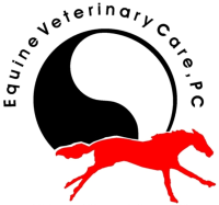 Equine Veterinary Care