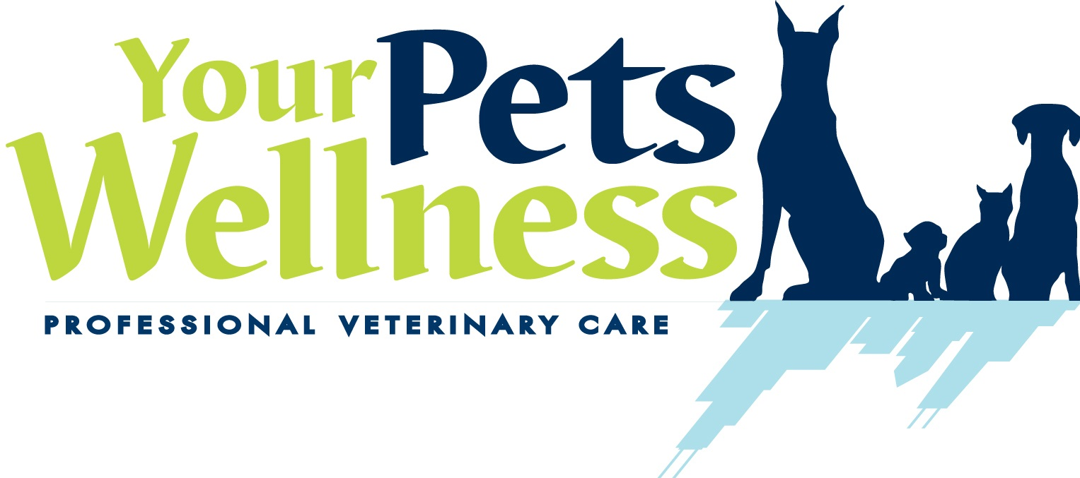 Your Pets Wellness