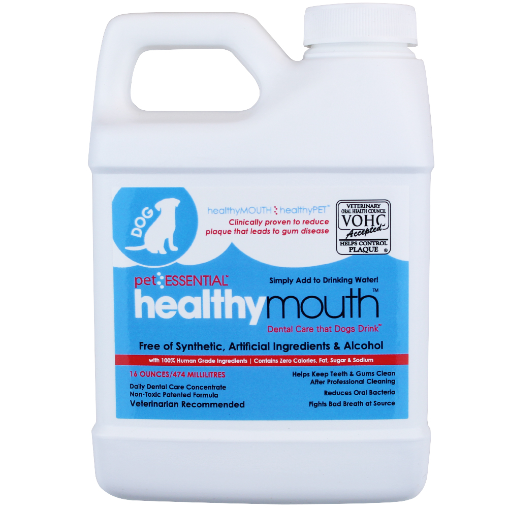 Healthy Mouth Essential Dog