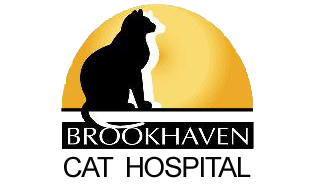 Brookhaven Cat Hospital