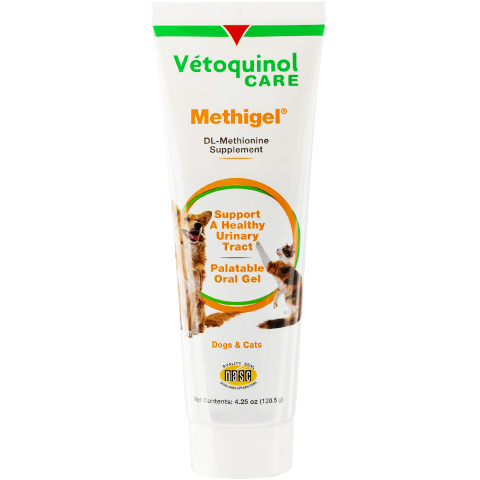 Methigel Paste
