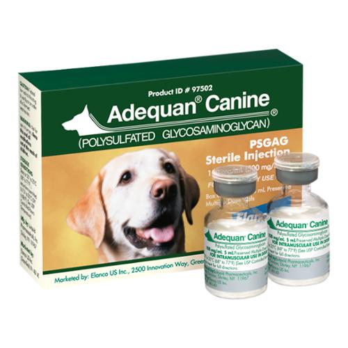 Canine Adequan®