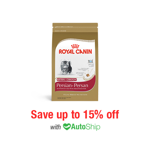 Royal Canin Feline Breed Nutrition Kitten Persian Dry
