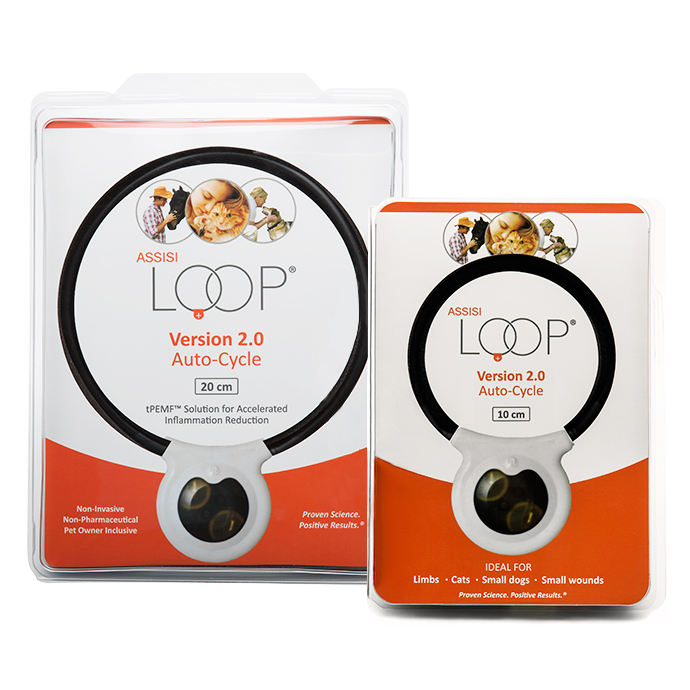 Assisi Loop® 2.0 Auto-Cycle