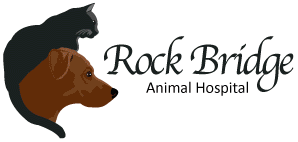 Rock Bridge Animal Hospital