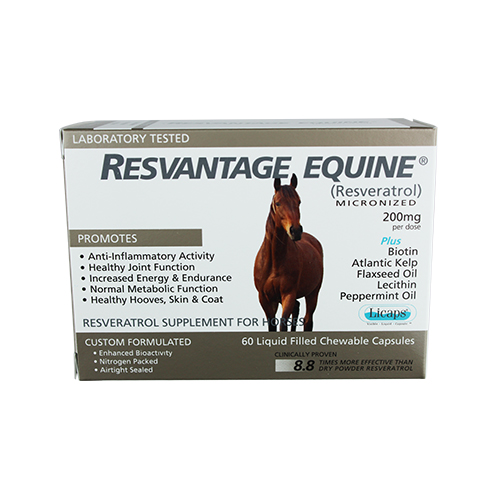 Resvantage Equine®