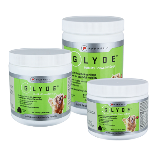 Glyde® Mobility Chews for Dogs
