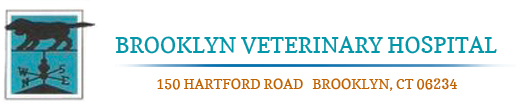 Brooklyn Veterinary Hospital
