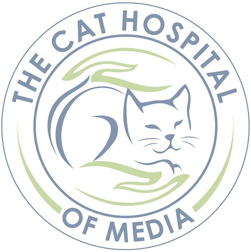 The Cat Hospital of Media