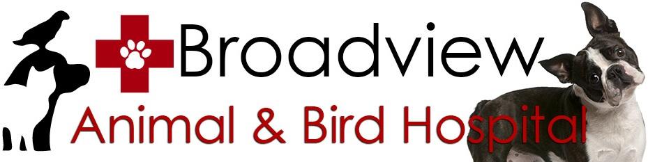 Broadview Animal and Bird Hospital