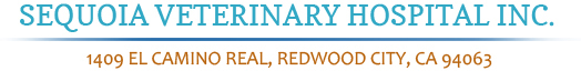 Sequoia Veterinary Hospital Inc.