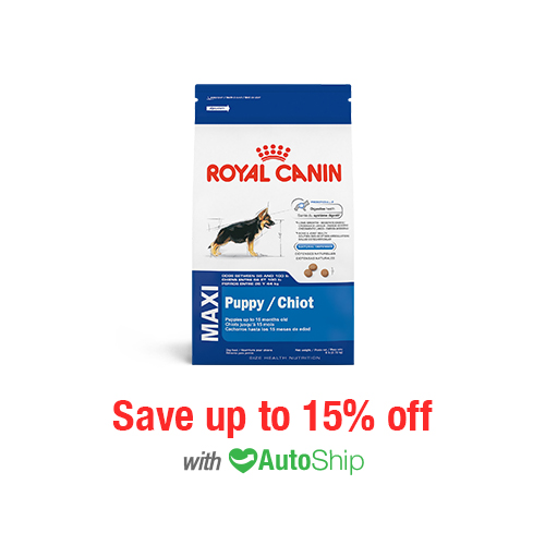 Royal Canin Size Health Nutrition MAXI Puppy Dry
