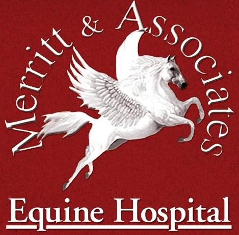 Merritt & Associates Equine Hospital