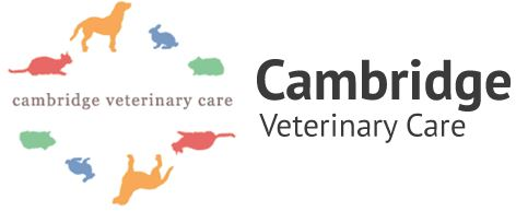 Cambridge Veterinary Care
