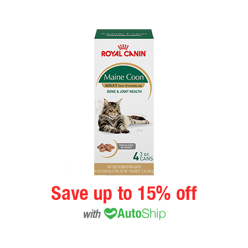 Royal Canin Feline Breed Nutrition Maine Coon Cans