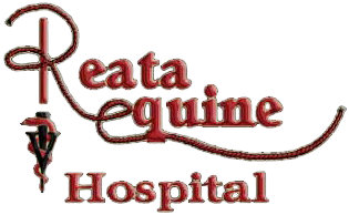 Reata Equine Hospital