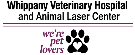 Whippany Veterinary Hospital