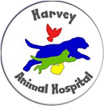 Harvey Animal Hospital