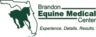 Brandon Equine Medical Center