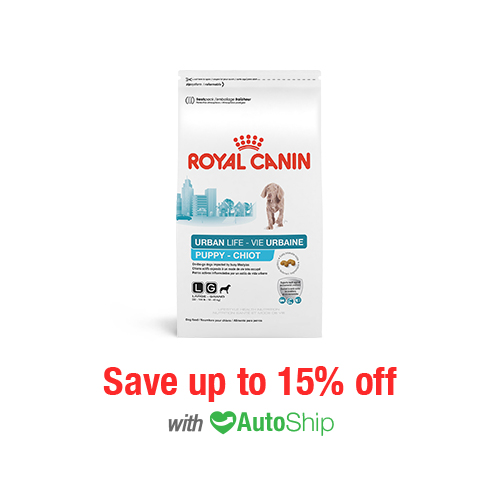 Royal Canin Lifestyle Health Nutrition Urban Life Large Breed Puppy Dry